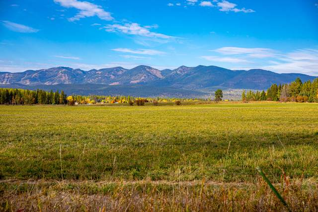 Nhn Monegan Road, Whitefish, MT 59937 (MLS #22116058) :: Whitefish Escapes Realty