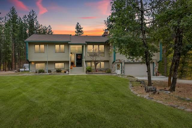 4020 Wakantanka Way, Stevensville, MT 59870 (MLS #22116117) :: Peak Property Advisors