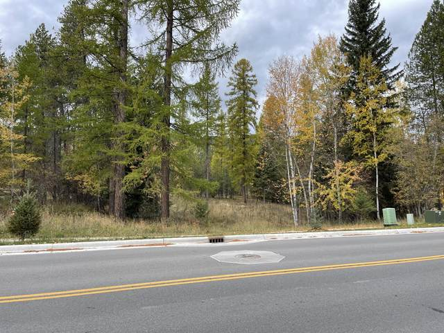 Nhn State Park Road, Whitefish, MT 59937 (MLS #22116119) :: Andy O Realty Group