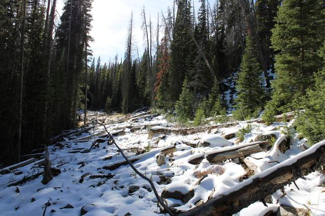 Tbd Granite Mountain Lode Ms 5807, Basin, MT 59631 (MLS #22116309) :: Whitefish Escapes Realty