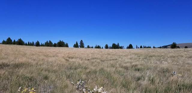 Tbd Evans Riceville Road, Belt, MT 59412 (MLS #22116329) :: Dahlquist Realtors