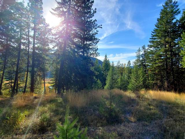 101 Lookout Drive, Libby, MT 59923 (MLS #22116343) :: Andy O Realty Group