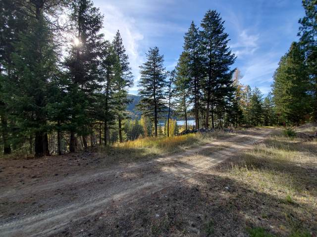 205 Lookout Drive, Libby, MT 59923 (MLS #22116358) :: Andy O Realty Group