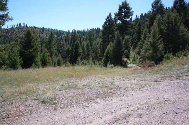 Nhn Wallace Creek Road S, Clinton, MT 59825 (MLS #22116547) :: Peak Property Advisors