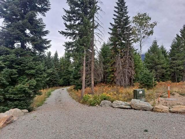 41 Triple J Loop Road, Trout Creek, MT 59874 (MLS #22116578) :: Dahlquist Realtors
