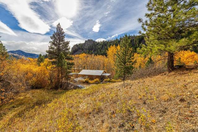 1235 Mt Hwy 434, Wolf Creek, MT 59648 (MLS #22116581) :: Dahlquist Realtors