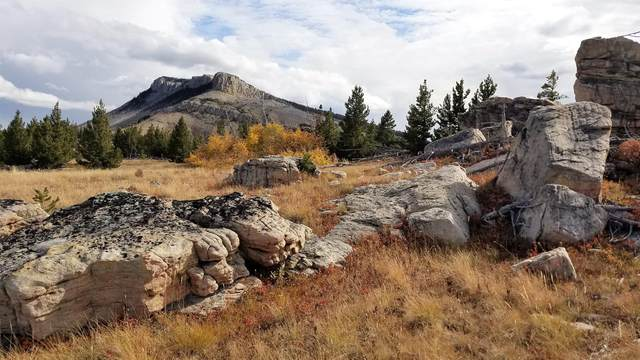 Nhn Steamboat Drive, Augusta, MT 59410 (MLS #22116714) :: Montana Life Real Estate