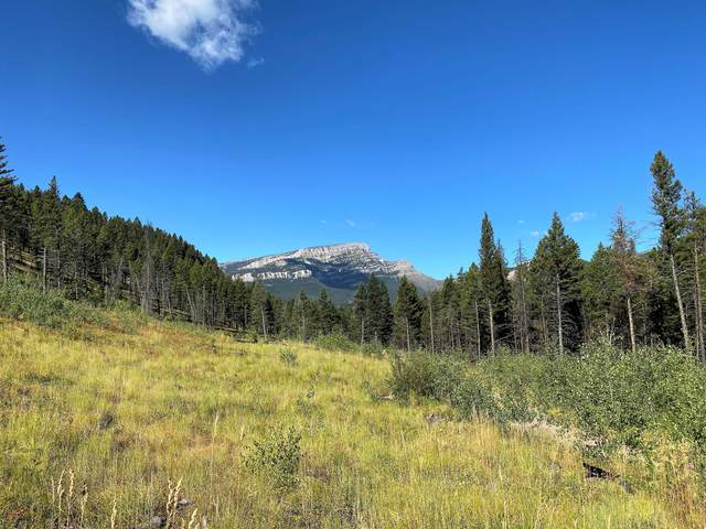 Nhn Table Mountain Road, Augusta, MT 59410 (MLS #22116715) :: Montana Life Real Estate