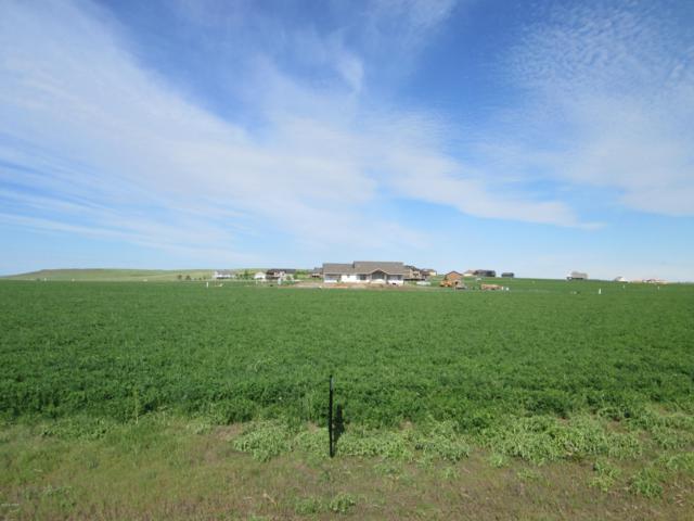 168 Granite Hill Lane, Great Falls, MT 59405 (MLS #3161079) :: Performance Real Estate