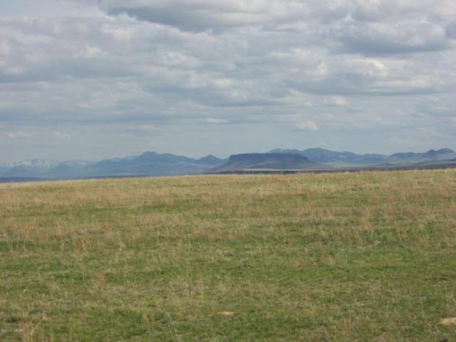 Lots 4A&B South Bench Estates, Fairfield, MT 59436 (MLS #3171335) :: Performance Real Estate