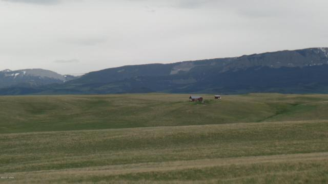 LOT 258 Cedar Drive, Willow Creek, Augusta, MT 59410 (MLS #3181122) :: Performance Real Estate