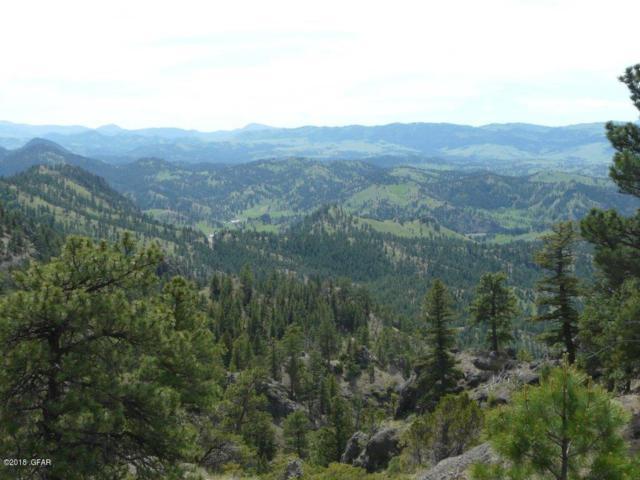 Sugarloaf Sugarlaof Mtn., Cascade, MT 59421 (MLS #3181146) :: Keith Fank Team