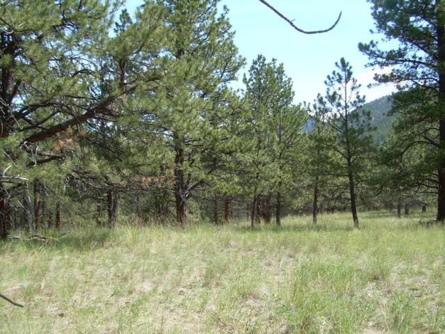 N. Lyons Creek, Wolf Creek, MT 59648 (MLS #3181575) :: Keith Fank Team