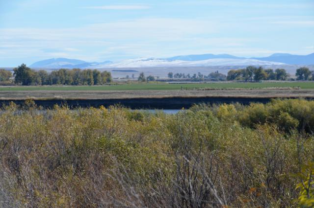 Willow Bend Lane, Cascade, MT 59421 (MLS #3182311) :: Performance Real Estate