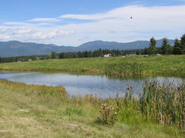 5025 Flatwater Drive, Whitefish, MT 59937 (MLS #333777) :: Loft Real Estate Team