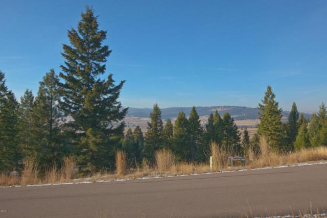 238 Bison Circle Drive, Kalispell, MT 59901 (MLS #337993) :: Performance Real Estate