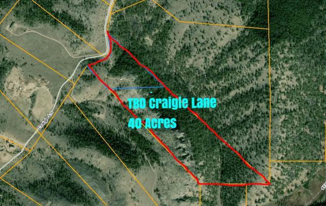 Tbd Craigle Lane, Helena, MT 59602 (MLS #1302262) :: Andy O Realty Group