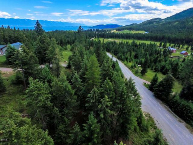 Nhn Swan View Road, Rollins, MT 59931 (MLS #21605686) :: Loft Real Estate Team