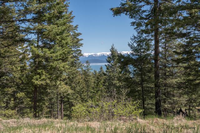 29 Calder Canyon Road, Lakeside, MT 59922 (MLS #21704661) :: Performance Real Estate