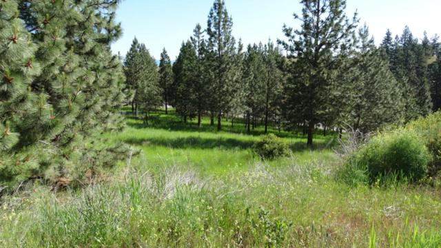 Lot 9 Sugar Pine Place, Lolo, MT 59847 (MLS #21707290) :: Loft Real Estate Team