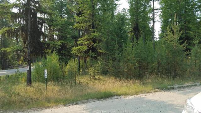 960 Lodgepole Drive, Marion, MT 59925 (MLS #21710144) :: Loft Real Estate Team