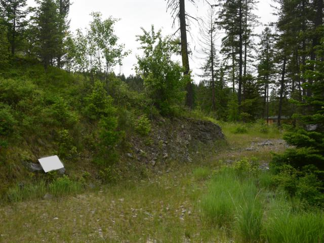 178 Bear Hollow Drive, Bigfork, MT 59911 (MLS #21710635) :: Andy O Realty Group
