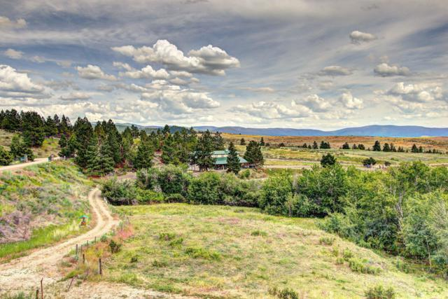 Tr 1a Red Quill Ranch, Florence, MT 59833 (MLS #21710679) :: Loft Real Estate Team