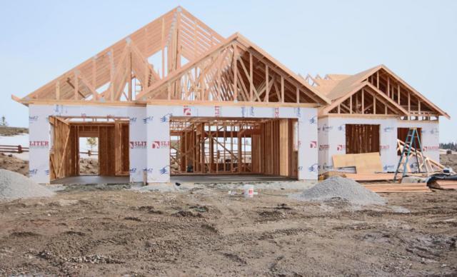142 Swede Trail, Kalispell, MT 59901 (MLS #21800827) :: Loft Real Estate Team