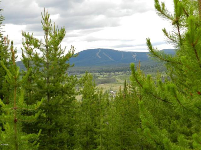 18 Moose Track Lane, Anaconda, MT 59711 (MLS #21803945) :: Loft Real Estate Team