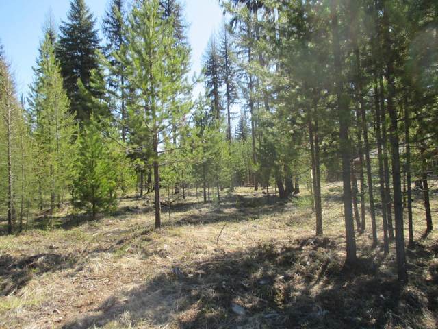 40 N Silver Drive, Yaak, MT 59935 (MLS #21804415) :: Whitefish Escapes Realty