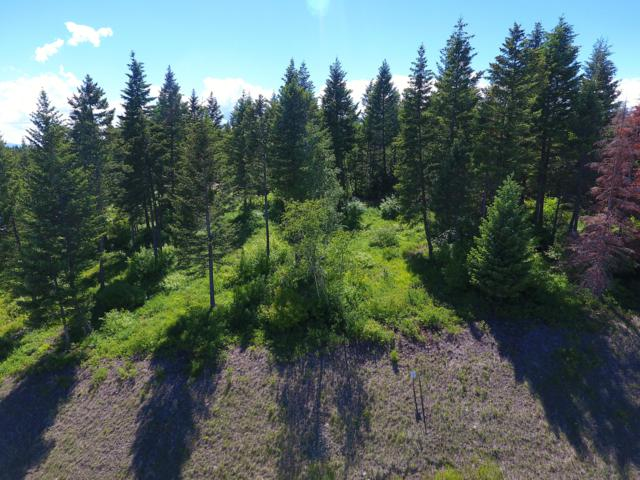 361 Gleneagles Trail, Columbia Falls, MT 59912 (MLS #21810660) :: Andy O Realty Group