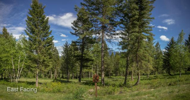 239 Gleneagles Trail, Columbia Falls, MT 59912 (MLS #21904404) :: Andy O Realty Group