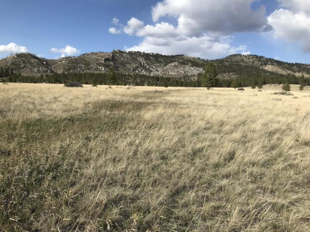 8455 Ordway Drive, Helena, MT 59602 (MLS #21905464) :: Performance Real Estate