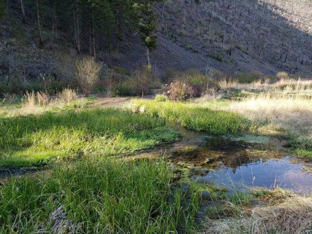 4 Miles Up Magpie Gulch Road, Townsend, MT 59644 (MLS #21906888) :: Andy O Realty Group