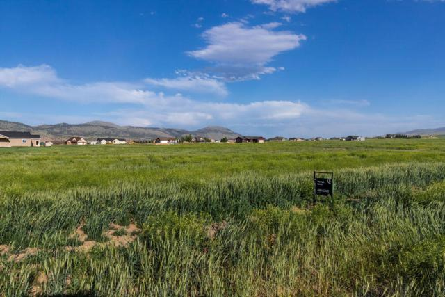 2119 Spring Wheat Loop, East Helena, MT 59635 (MLS #21909927) :: Andy O Realty Group
