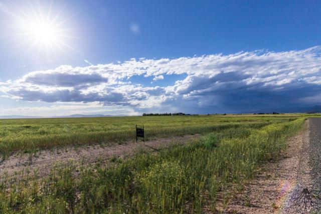 2134 Spring Wheat Loop, East Helena, MT 59635 (MLS #21909932) :: Andy O Realty Group