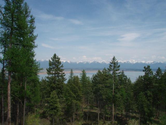 520 Deer Creek Road, Lakeside, MT 59922 (MLS #21912756) :: Andy O Realty Group