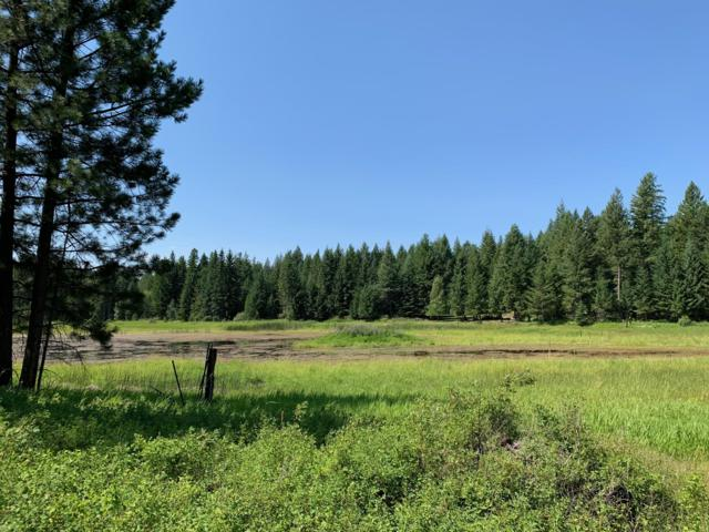 267 Mountain Timbers Drive, Columbia Falls, MT 59912 (MLS #21913266) :: Performance Real Estate