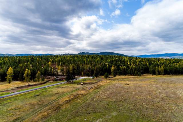 251 Shepherd Trail, Kalispell, MT 59901 (MLS #21916905) :: Montana Life Real Estate