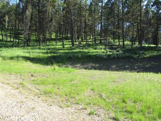 Lot 7 Upper Whitetail Drive, Helmville, MT 59843 (MLS #22001492) :: Andy O Realty Group
