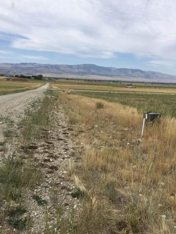 Lot 24 Stoney Trail, Townsend, MT 59644 (MLS #22001964) :: Performance Real Estate