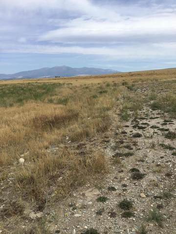 Lot 30 Stoney Trail, Townsend, MT 59644 (MLS #22001970) :: Andy O Realty Group