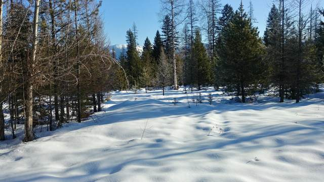 770 Potter Creek Road, Olney, MT 59927 (MLS #22002217) :: Whitefish Escapes Realty
