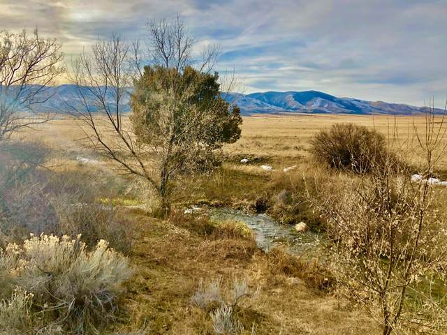 Lot B-1 Spring Street, Townsend, MT 59644 (MLS #22003117) :: Andy O Realty Group