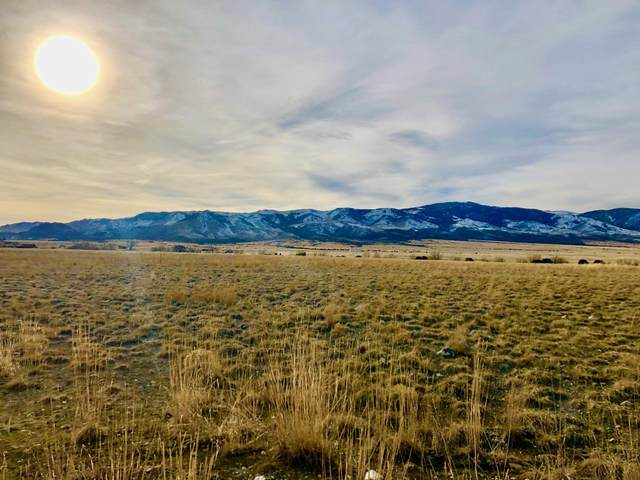 Lot C-3 Spring Street, Townsend, MT 59644 (MLS #22003178) :: Andy O Realty Group