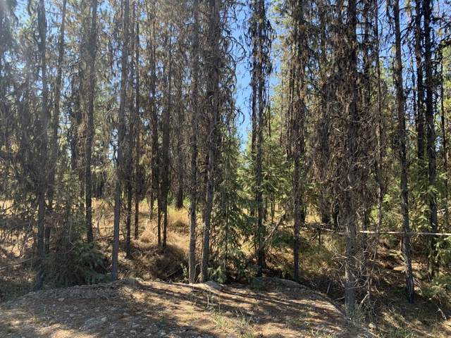 Lot 3 Pleasant Valley Road, Libby, MT 59923 (MLS #22004891) :: Montana Life Real Estate