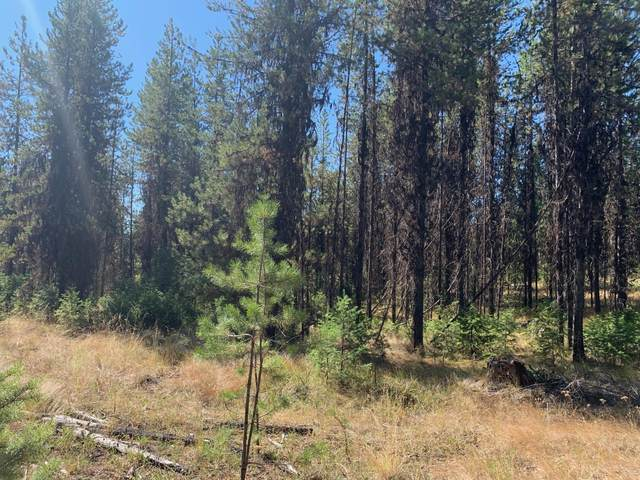 Lot 4 Pleasant Valley Road, Libby, MT 59923 (MLS #22004892) :: Montana Life Real Estate
