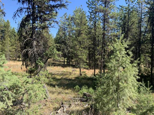 Lot 6 Pleasant Valley Road, Libby, MT 59923 (MLS #22004895) :: Andy O Realty Group