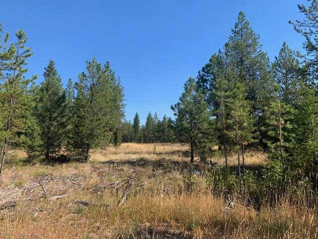 Lot 14 Heavenly Drive, Libby, MT 59923 (MLS #22004906) :: Andy O Realty Group