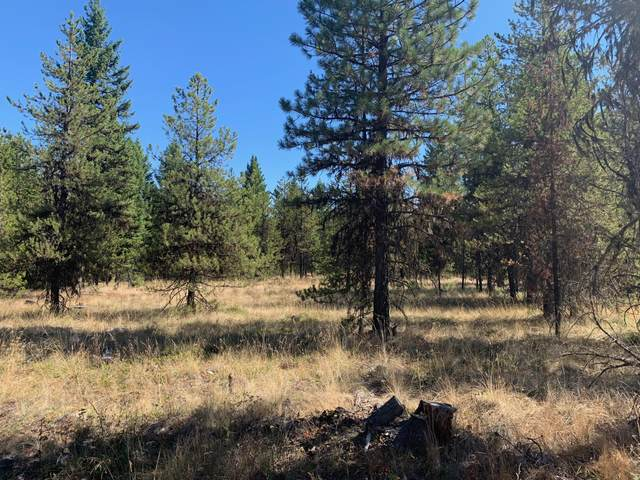 Lot 17 Pleasant Valley Road, Libby, MT 59923 (MLS #22004910) :: Montana Life Real Estate